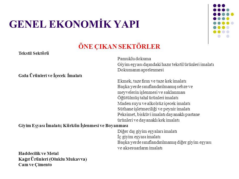 Türkiye ve TR32 Bölgesi'nde İstihdamın Sektörlere Göre Dağılımı (2006 Yılı - %) BÖLGESektör HİZMETLERSANAYİTARIM Türkiye47.325.427.3 TR 3242.322.734.9