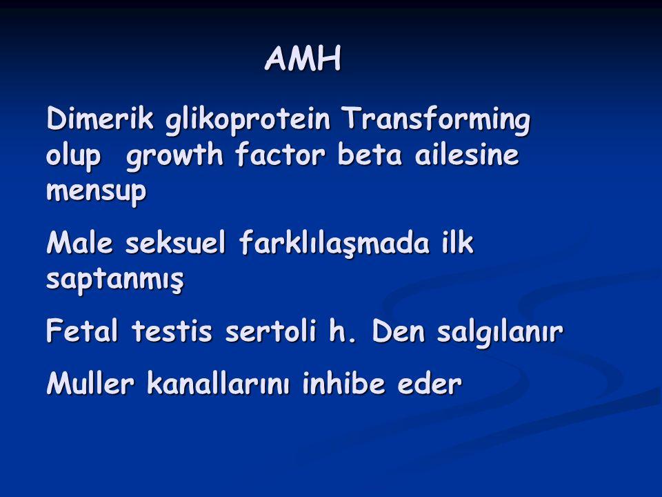 AMH Dimerik glikoprotein Transforming olup growth factor beta ailesine mensup Male seksuel farklılaşmada ilk saptanmış Fetal testis sertoli h. Den sal