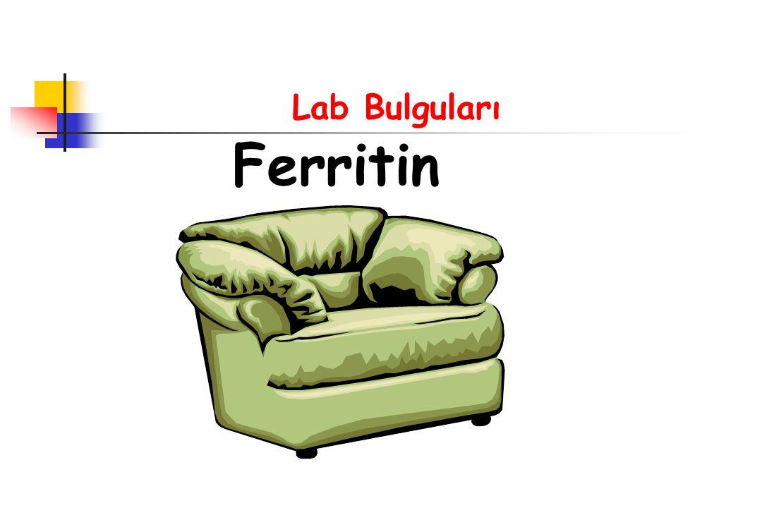 Lab Bulguları Ferritin