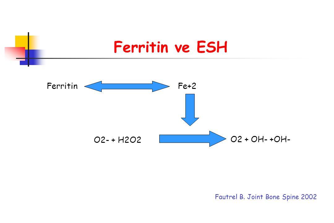 FerritinFe+2 O2- + H2O2 O2 + OH- +OH- Fautrel B. Joint Bone Spine 2002 Ferritin ve ESH