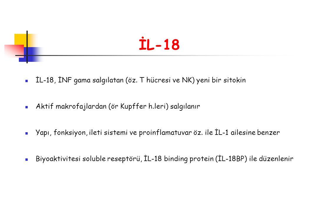 İL-18 İL-18, İNF gama salgılatan (öz. T hücresi ve NK) yeni bir sitokin Aktif makrofajlardan (ör Kupffer h.leri) salgılanır Yapı, fonksiyon, ileti sis