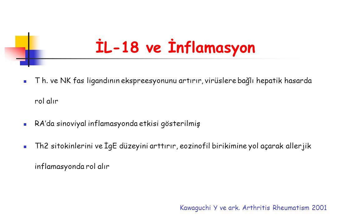 İL-18 ve İnflamasyon T h. ve NK fas ligandının ekspreesyonunu artırır, virüslere bağlı hepatik hasarda rol alır RA'da sinoviyal inflamasyonda etkisi g