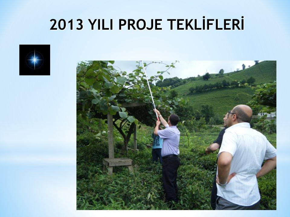 2013 YILI PROJE TEKLİFLERİ