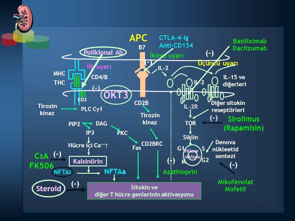 Property Daclizumab Simulect mAb TypeHumanizedChimeric Number of injections52 Dose1 mg/kg20 mg Regimen 5 Q2Week (0, 2, 4, 6, 8)2 (days 0,4) Efficacy (dual therapy)++++ Safety++++++ TolerabilityGoodGood Immunogenicity (anti-Id Ab) Low Low İndüksiyon Tedavisinde Kullanılan Anti-IL-2 Monoklonal Antikorları