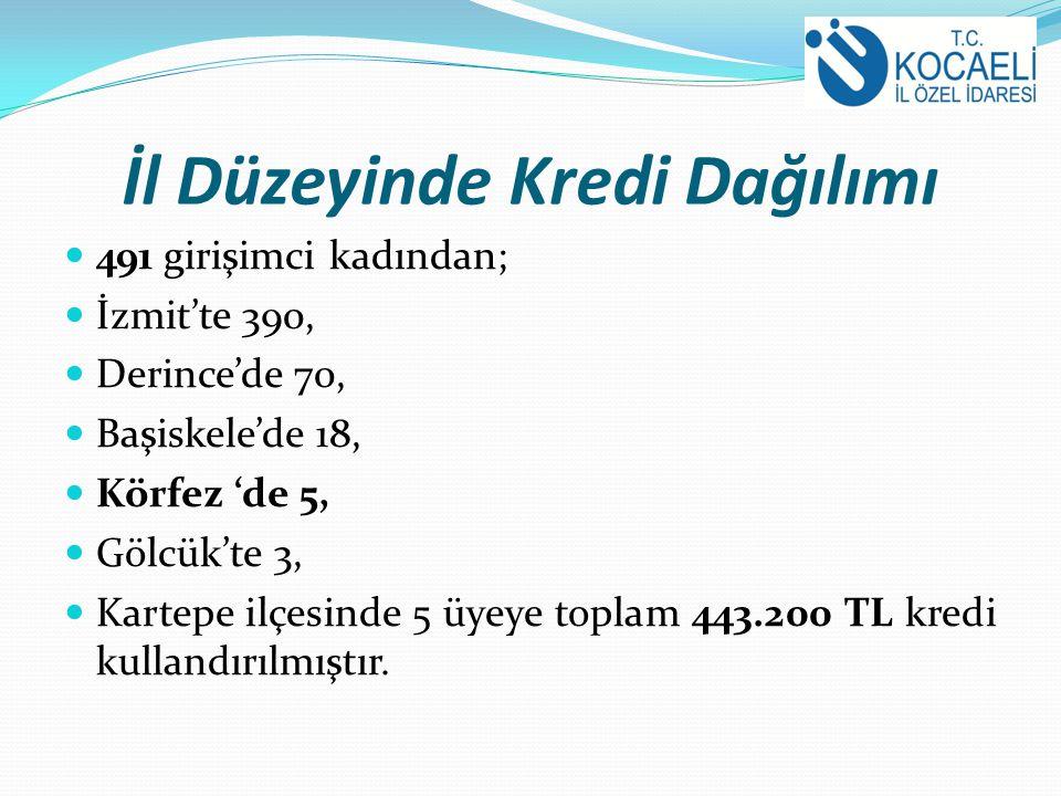 İl Düzeyinde Kredi Dağılımı 491 girişimci kadından; İzmit'te 390, Derince'de 70, Başiskele'de 18, Körfez 'de 5, Gölcük'te 3, Kartepe ilçesinde 5 üyeye