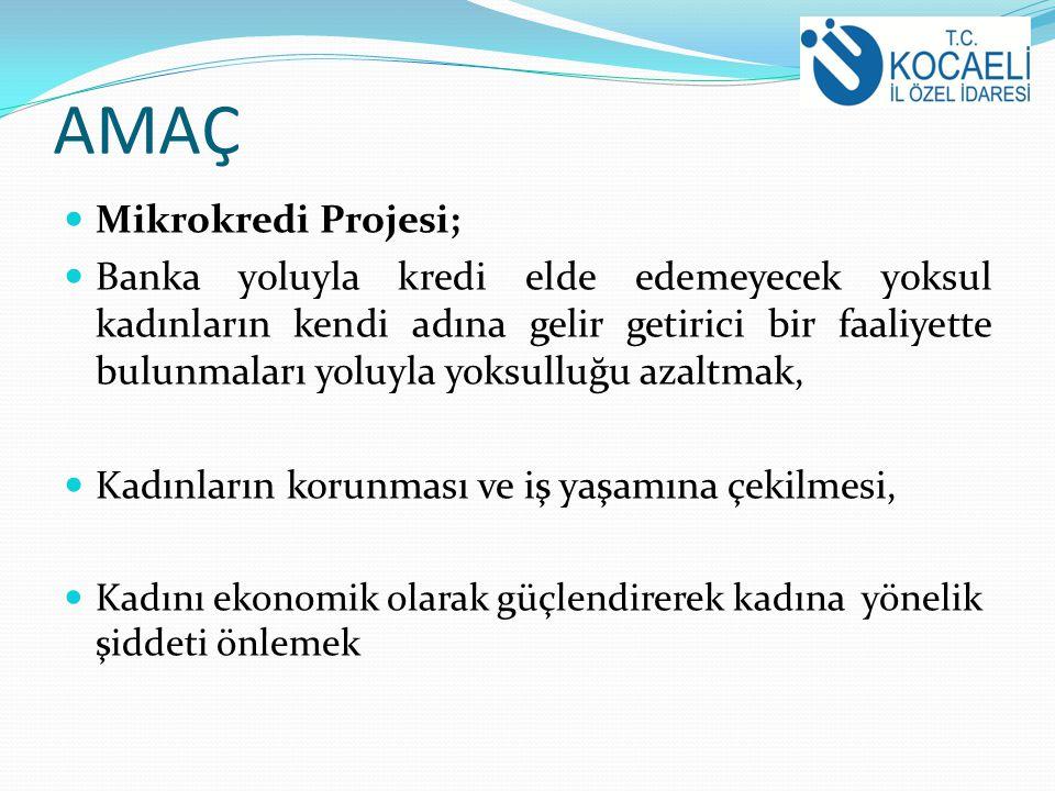 2010 yılı Temmuz ayının sonuna kadar İzmit ilçede 30 grup, diğer ilçelerde 14 gruba eğitim randevusu verilmiştir.