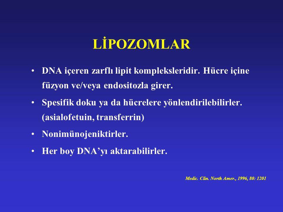 LİPOZOMLAR DNA içeren zarflı lipit kompleksleridir. Hücre içine füzyon ve/veya endositozla girer. Spesifik doku ya da hücrelere yönlendirilebilirler.