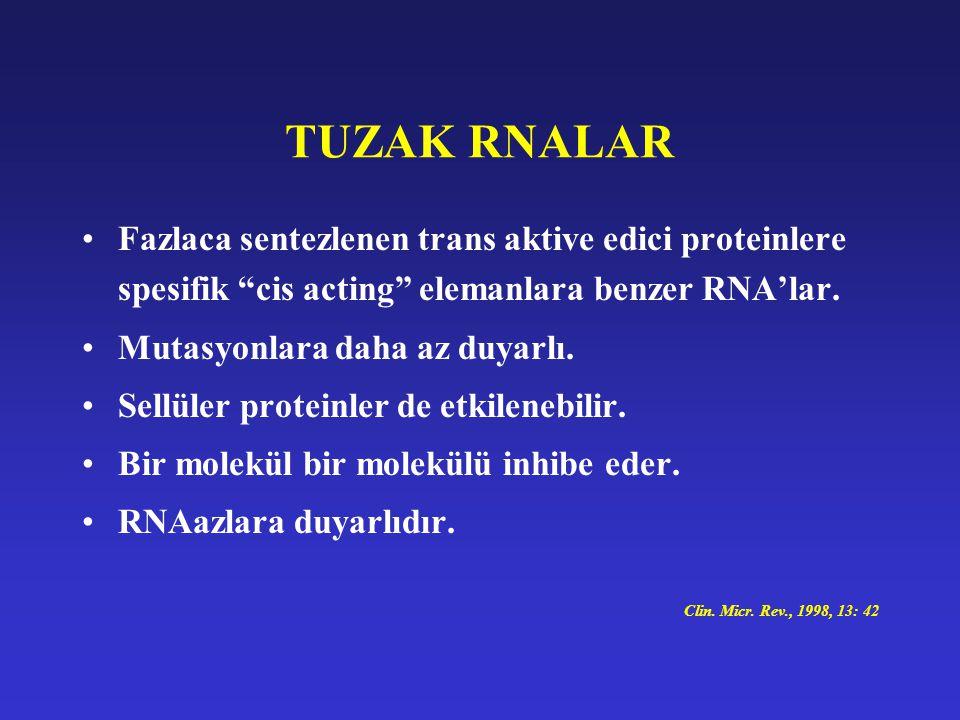 "TUZAK RNALAR Fazlaca sentezlenen trans aktive edici proteinlere spesifik ""cis acting"" elemanlara benzer RNA'lar. Mutasyonlara daha az duyarlı. Sellüle"