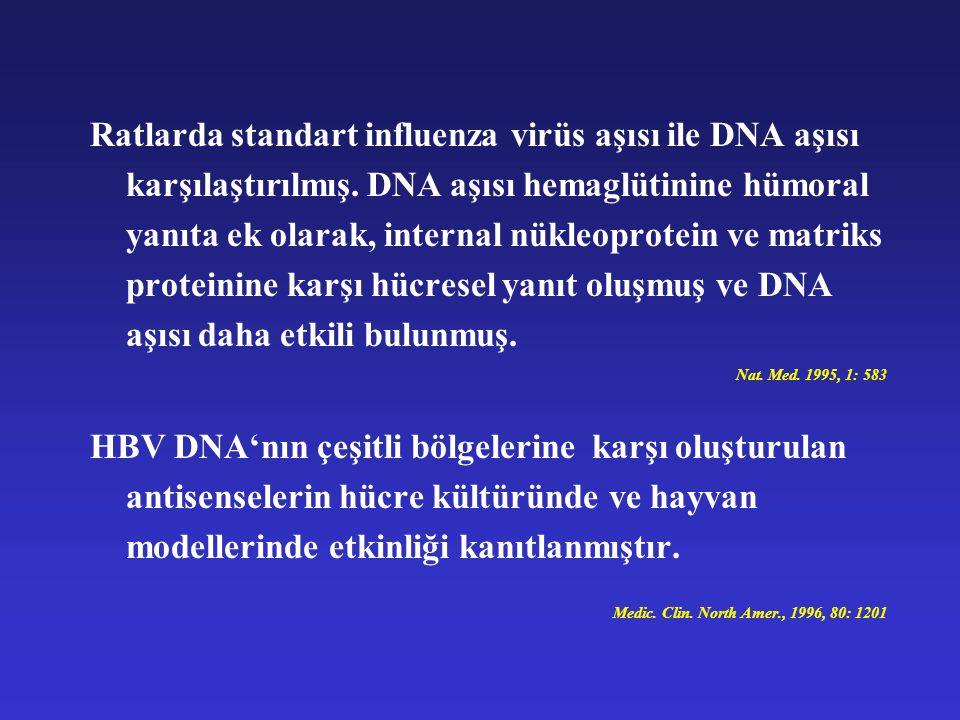 Ratlarda standart influenza virüs aşısı ile DNA aşısı karşılaştırılmış. DNA aşısı hemaglütinine hümoral yanıta ek olarak, internal nükleoprotein ve ma