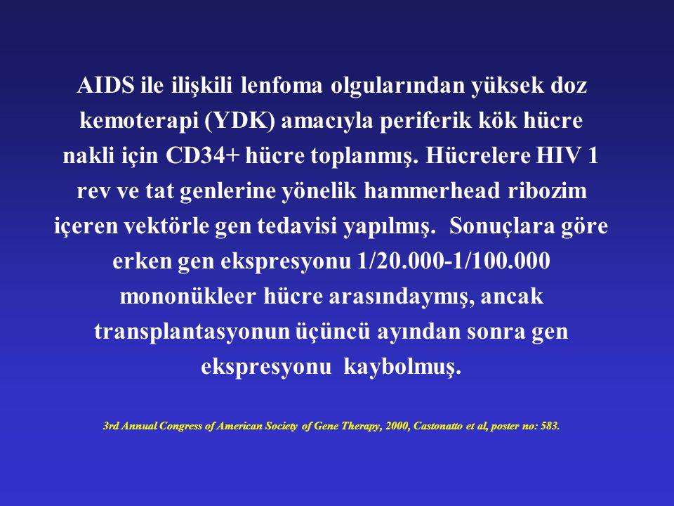AIDS ile ilişkili lenfoma olgularından yüksek doz kemoterapi (YDK) amacıyla periferik kök hücre nakli için CD34+ hücre toplanmış. Hücrelere HIV 1 rev