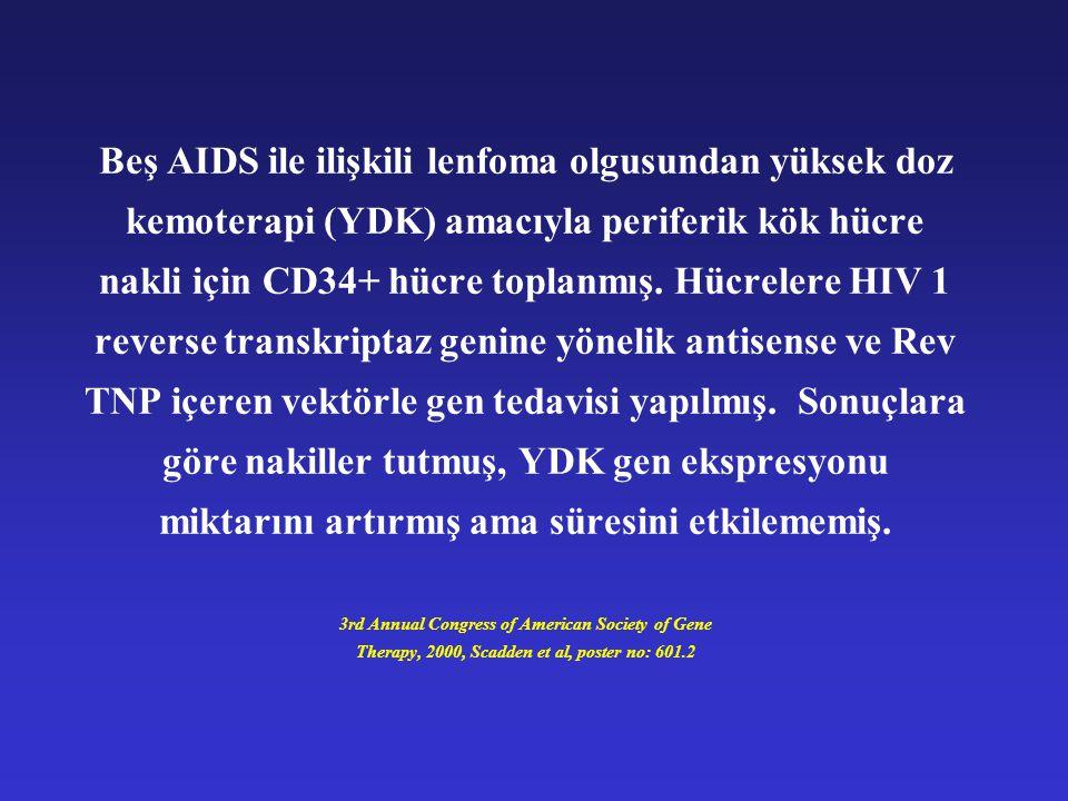 Beş AIDS ile ilişkili lenfoma olgusundan yüksek doz kemoterapi (YDK) amacıyla periferik kök hücre nakli için CD34+ hücre toplanmış. Hücrelere HIV 1 re