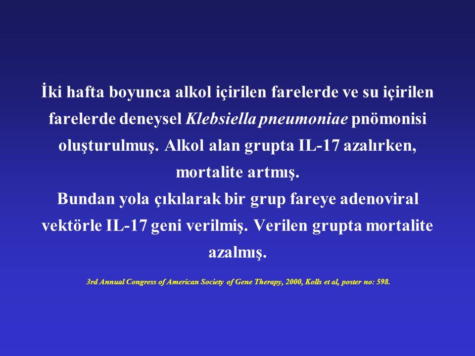 İki hafta boyunca alkol içirilen farelerde ve su içirilen farelerde deneysel Klebsiella pneumoniae pnömonisi oluşturulmuş. Alkol alan grupta IL-17 aza