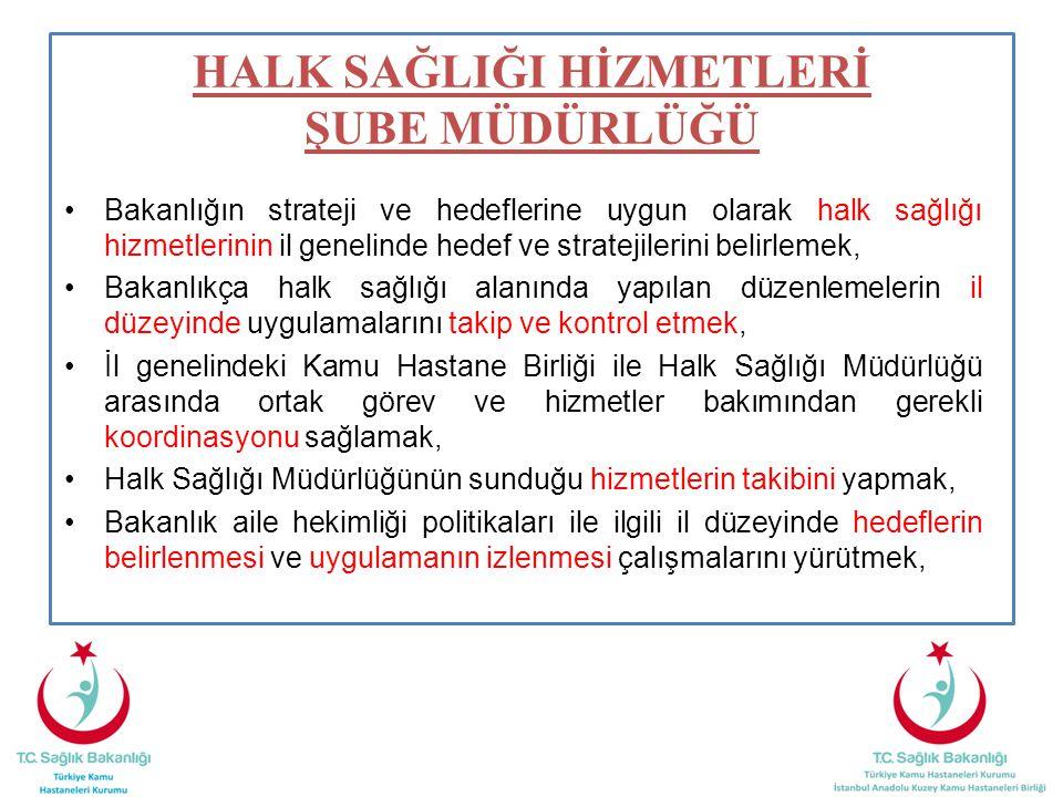 Bakanlığın strateji ve hedeflerine uygun olarak halk sağlığı hizmetlerinin il genelinde hedef ve stratejilerini belirlemek, Bakanlıkça halk sağlığı alanında yapılan düzenlemelerin il düzeyinde uygulamalarını takip ve kontrol etmek, İl genelindeki Kamu Hastane Birliği ile Halk Sağlığı Müdürlüğü arasında ortak görev ve hizmetler bakımından gerekli koordinasyonu sağlamak, Halk Sağlığı Müdürlüğünün sunduğu hizmetlerin takibini yapmak, Bakanlık aile hekimliği politikaları ile ilgili il düzeyinde hedeflerin belirlenmesi ve uygulamanın izlenmesi çalışmalarını yürütmek, HALK SAĞLIĞI HİZMETLERİ ŞUBE MÜDÜRLÜĞÜ