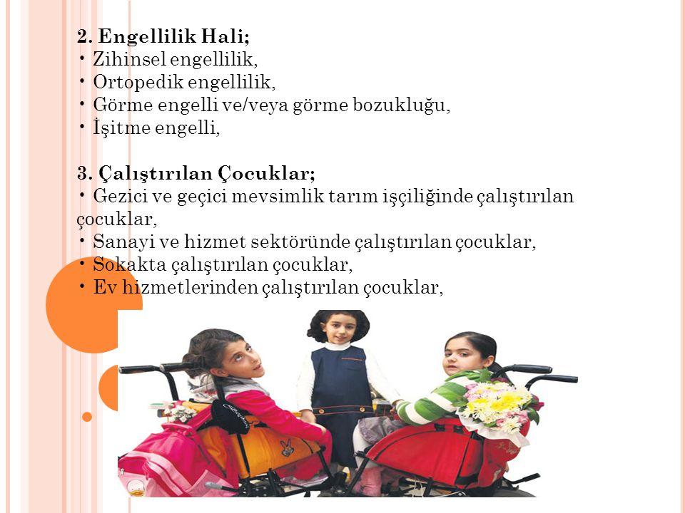 2. Engellilik Hali; Zihinsel engellilik, Ortopedik engellilik, Görme engelli ve/veya görme bozukluğu, İşitme engelli, 3. Çalıştırılan Çocuklar; Gezici
