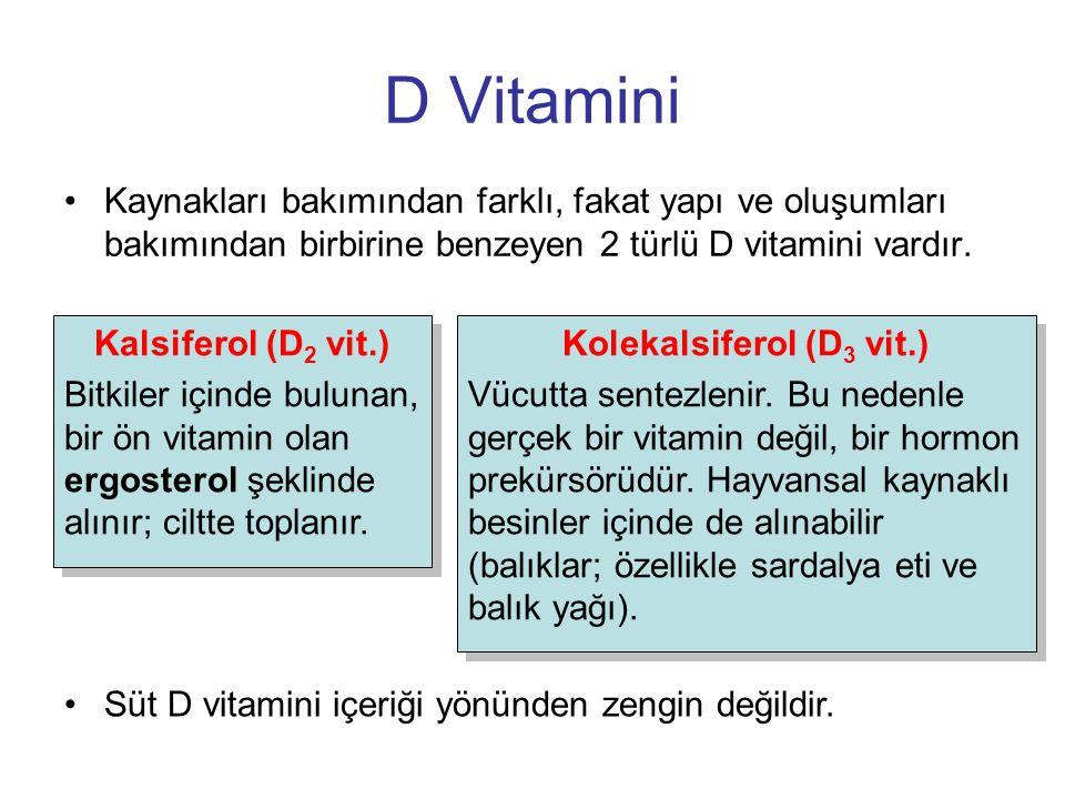 D Vitamini Kaynakları bakımından farklı, fakat yapı ve oluşumları bakımından birbirine benzeyen 2 türlü D vitamini vardır. Süt D vitamini içeriği yönü