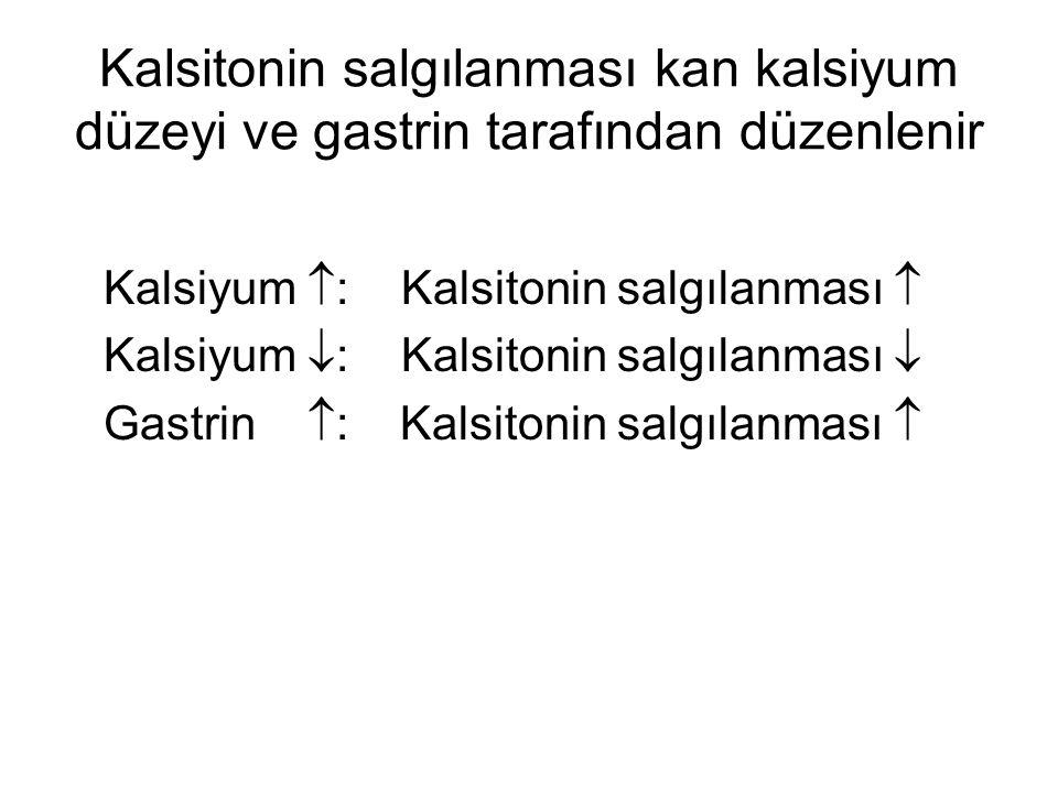 Kalsitonin salgılanması kan kalsiyum düzeyi ve gastrin tarafından düzenlenir Kalsiyum  : Kalsitonin salgılanması  Kalsiyum  : Kalsitonin salgılanması  Gastrin  : Kalsitonin salgılanması 