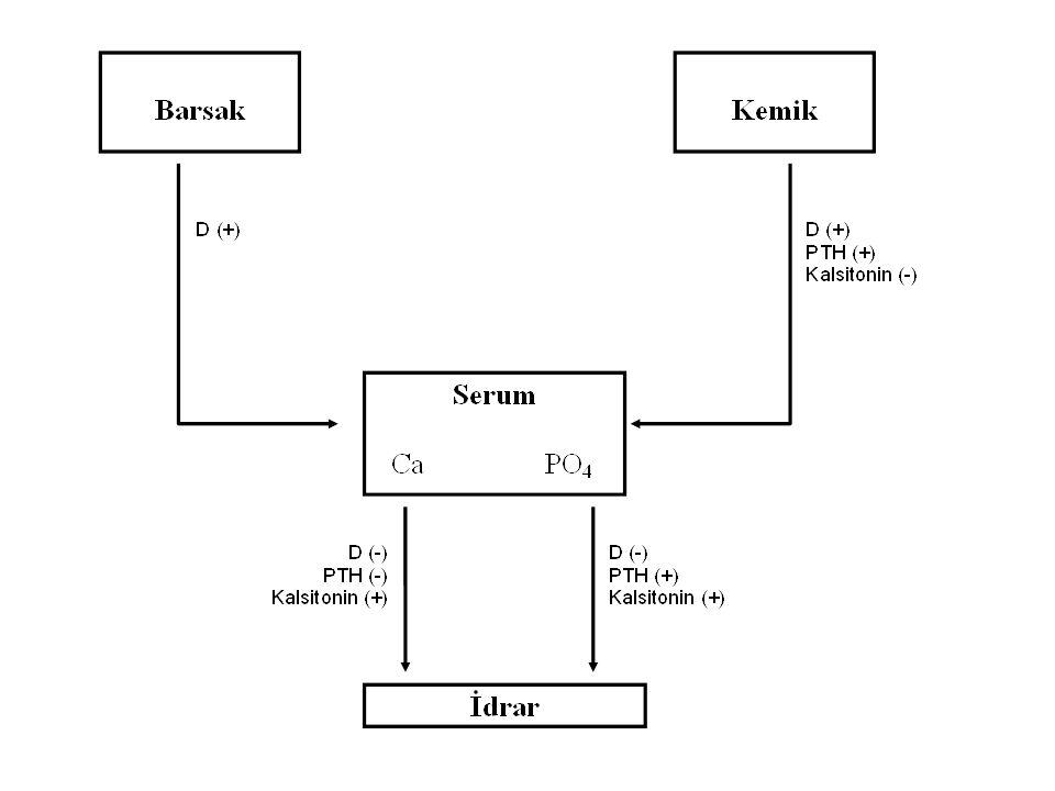 Perikalsitol ZEMPLAR 5 micg/1 mL, 5 ampul217,42 YTL 10 micg/2 mL, 5 ampul411,17 YTL Sentetik bir D vitamini analoğudur.