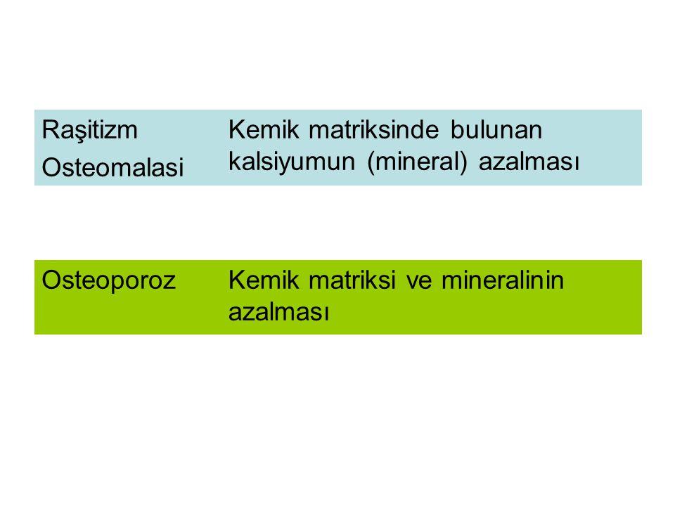 Normal KemikOsteoporotik Kemik