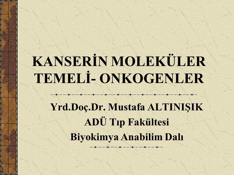 KANSERİN MOLEKÜLER TEMELİ- ONKOGENLER Yrd.Doç.Dr. Mustafa ALTINIŞIK ADÜ Tıp Fakültesi Biyokimya Anabilim Dalı