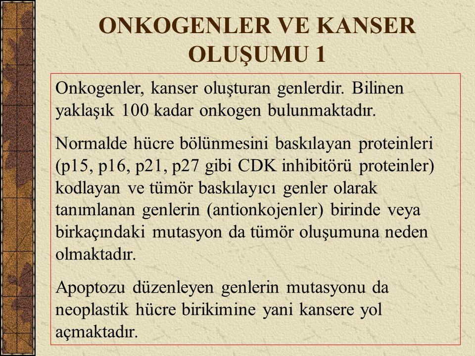 ONKOGENLER VE KANSER OLUŞUMU 1 Onkogenler, kanser oluşturan genlerdir. Bilinen yaklaşık 100 kadar onkogen bulunmaktadır. Normalde hücre bölünmesini ba
