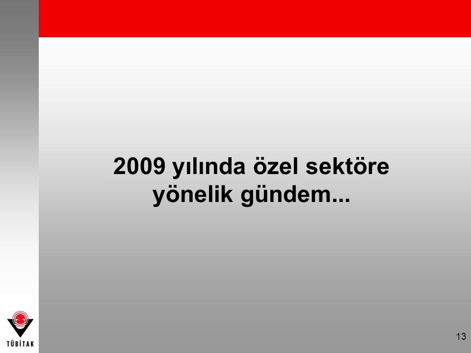 13 2009 yılında özel sektöre yönelik gündem...