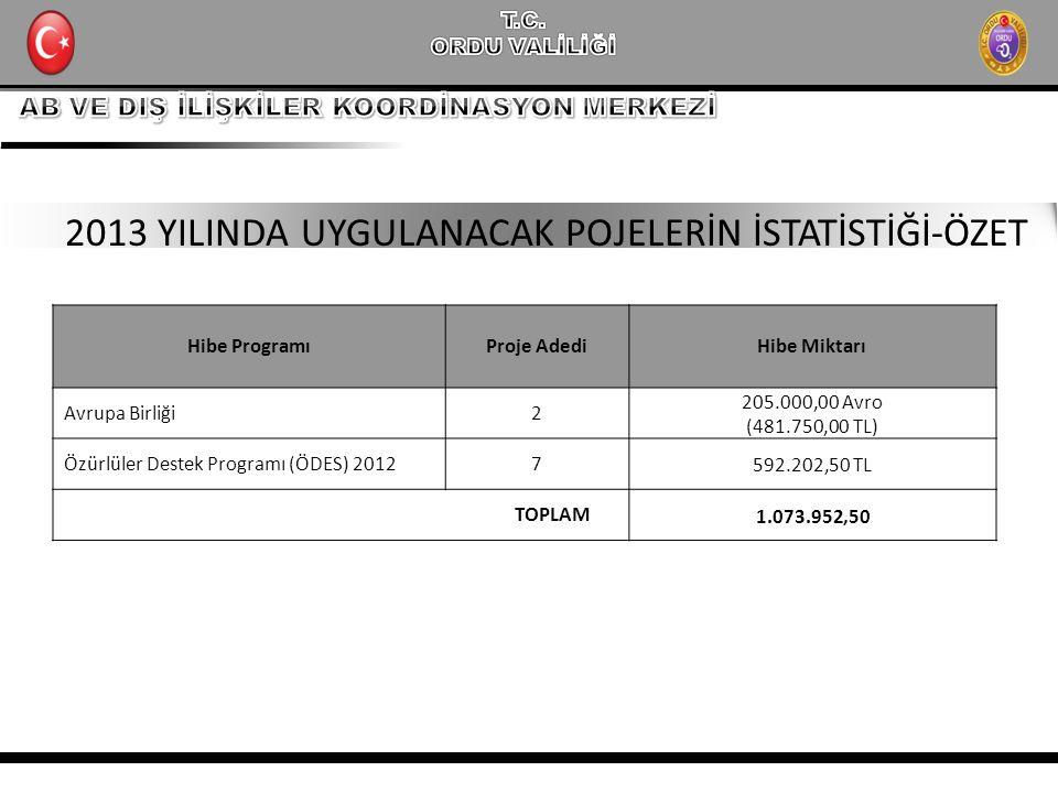 Hibe ProgramıProje AdediHibe Miktarı Avrupa Birliği2 205.000,00 Avro (481.750,00 TL) Özürlüler Destek Programı (ÖDES) 20127 592.202,50 TL TOPLAM 1.073.952,50 2013 YILINDA UYGULANACAK POJELERİN İSTATİSTİĞİ-ÖZET
