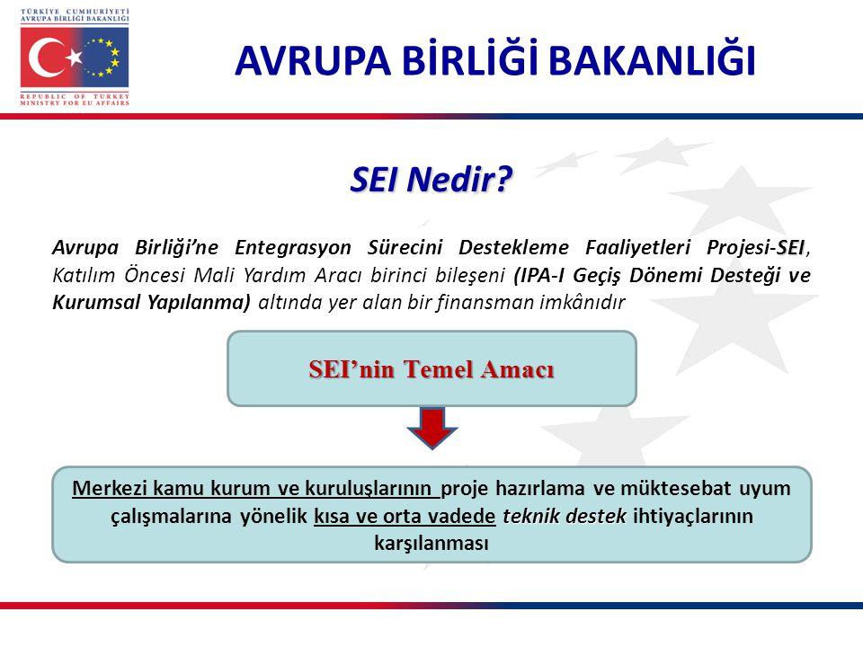 teknik destek Merkezi kamu kurum ve kuruluşlarının proje hazırlama ve müktesebat uyum çalışmalarına yönelik kısa ve orta vadede teknik destek ihtiyaçl