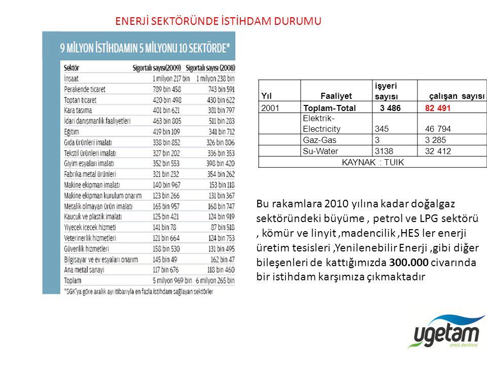 YılFaaliyet işyeri sayısıçalışan sayısı 2001Toplam-Total 3 486 82 491 Elektrik- Electricity345 46 794 Gaz-Gas3 3 285 Su-Water3138 32 412 KAYNAK : TUIK