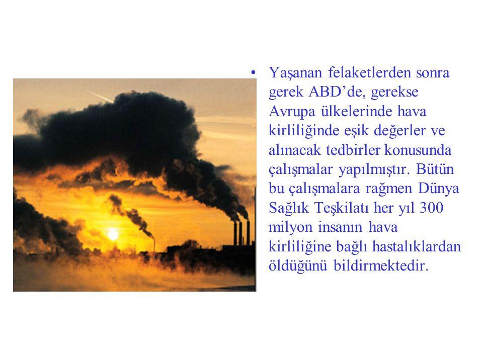 Yaşanan felaketlerden sonra gerek ABD'de, gerekse Avrupa ülkelerinde hava kirliliğinde eşik değerler ve alınacak tedbirler konusunda çalışmalar yapılm
