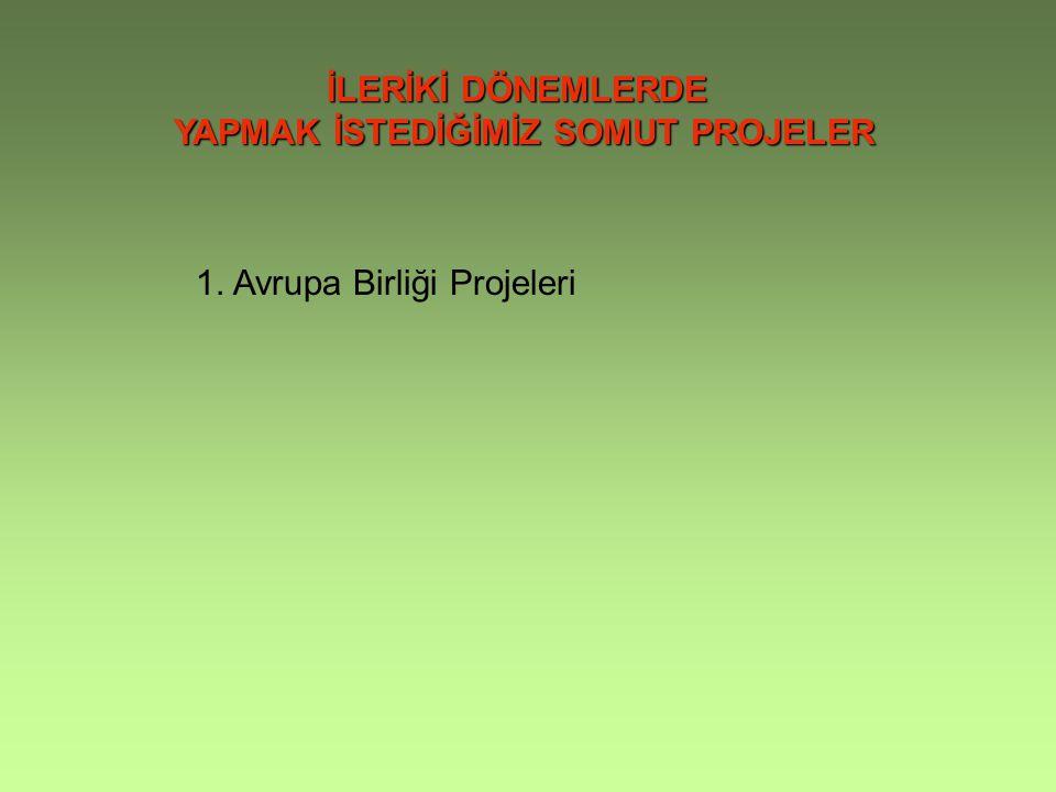 İLERİKİ DÖNEMLERDE YAPMAK İSTEDİĞİMİZ SOMUT PROJELER 1. Avrupa Birliği Projeleri