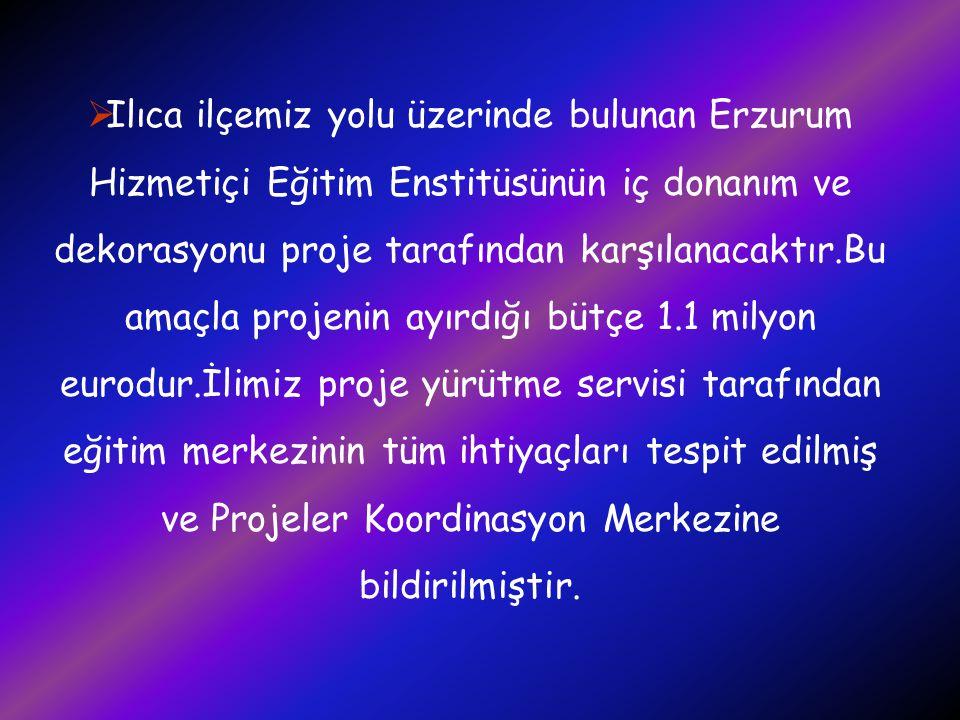  Ilıca ilçemiz yolu üzerinde bulunan Erzurum Hizmetiçi Eğitim Enstitüsünün iç donanım ve dekorasyonu proje tarafından karşılanacaktır.Bu amaçla proje