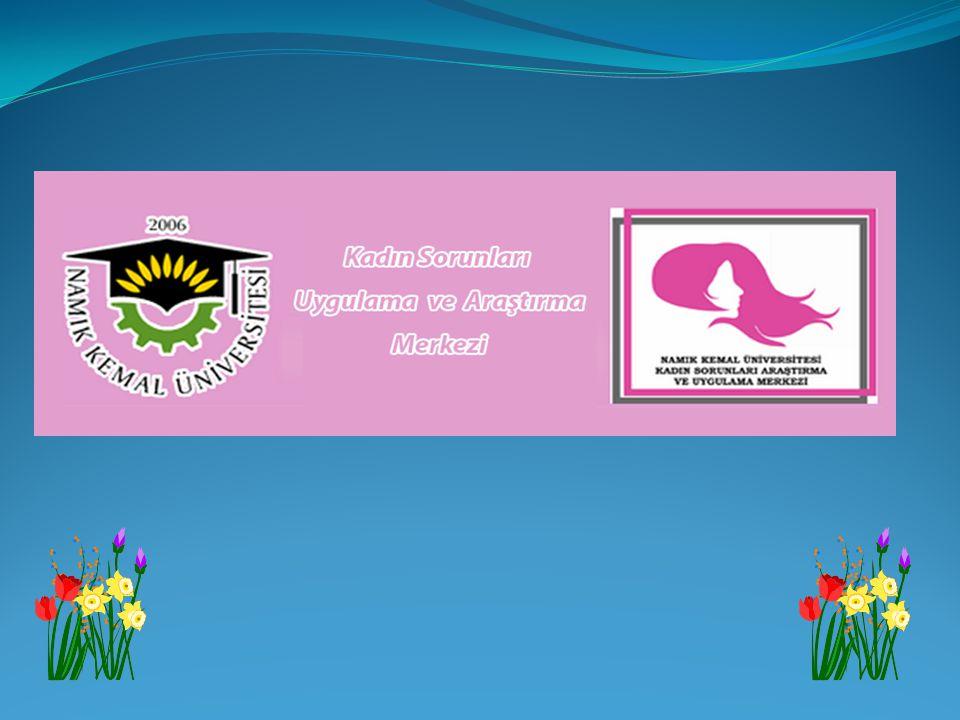 Merkezimiz 16.05.2012 tarihli resmi gazetede yayınlanan yönetmelikle kurulmuş ve yaklaşık 2 yıldır faaliyet göstermektedir.