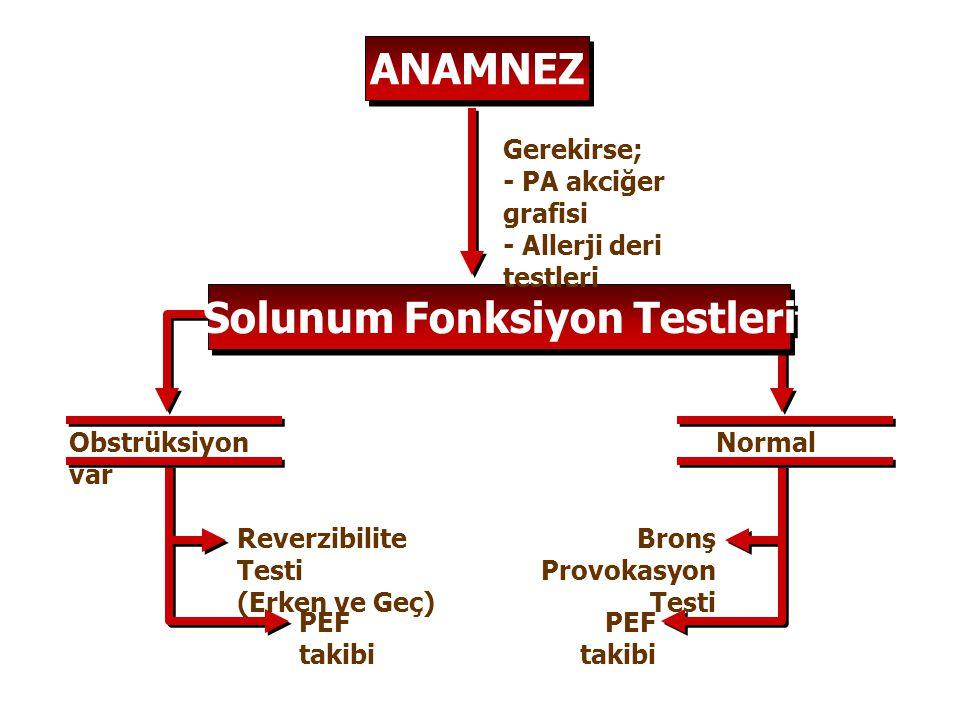 ANAMNEZ Solunum Fonksiyon Testleri Gerekirse; - PA akciğer grafisi - Allerji deri testleri Obstrüksiyon var Normal Reverzibilite Testi (Erken ve Geç)