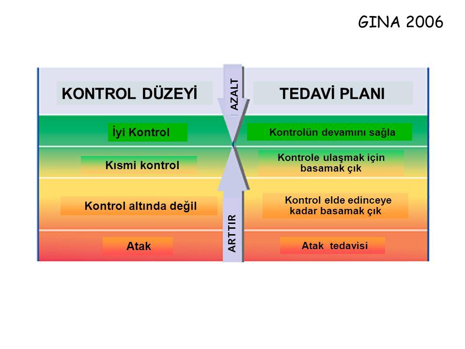 Atak Kontrol altında değil Kısmi kontrol İyi Kontrol Kontrolün devamını sağla Kontrole ulaşmak için basamak çık Kontrol elde edinceye kadar basamak çı