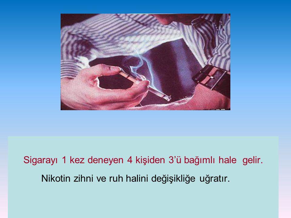 Sigarayı 1 kez deneyen 4 kişiden 3'ü bağımlı hale gelir. Nikotin zihni ve ruh halini değişikliğe uğratır.