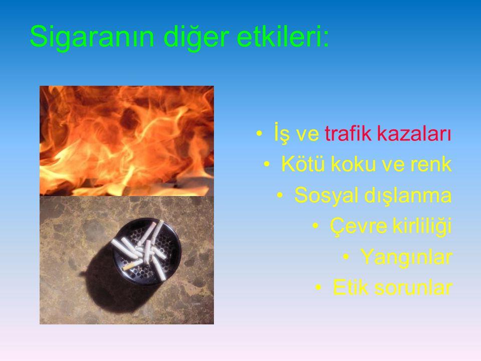 Sigaranın diğer etkileri: İş ve trafik kazaları Kötü koku ve renk Sosyal dışlanma Çevre kirliliği Yangınlar Etik sorunlar