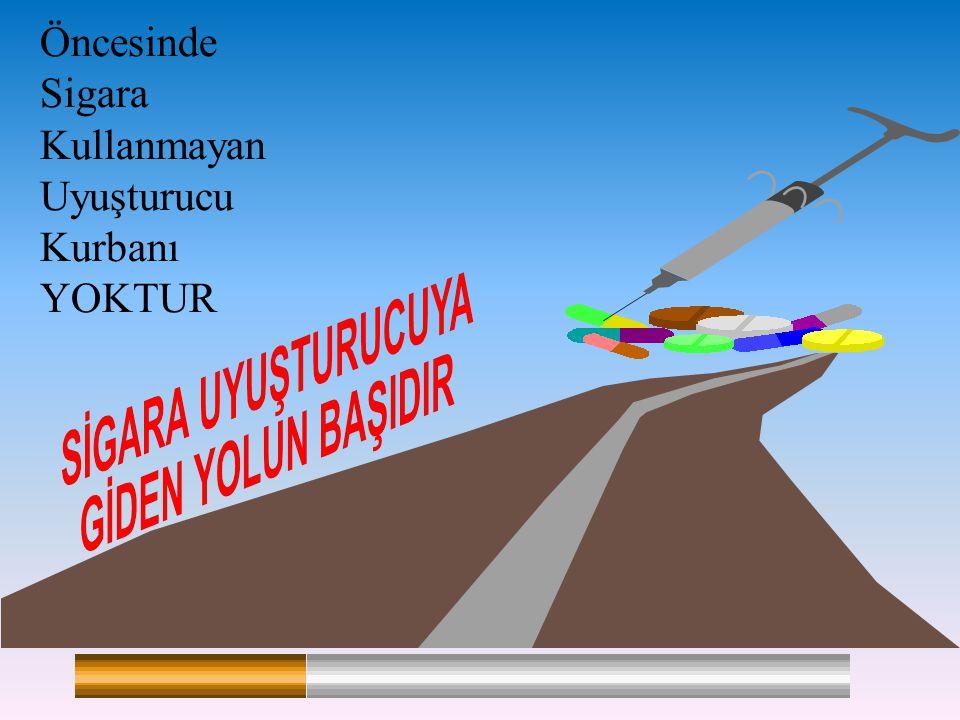 İSTANBUL, 31 MAYIS 2006 Öncesinde Sigara Kullanmayan Uyuşturucu Kurbanı YOKTUR
