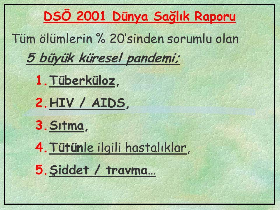 DSÖ 2001 Dünya Sağlık Raporu Tüm ölümlerin % 20'sinden sorumlu olan 5 büyük küresel pandemi; 1.Tüberküloz, 2.HIV / AIDS, 3.Sıtma, 4.Tütünle ilgili has