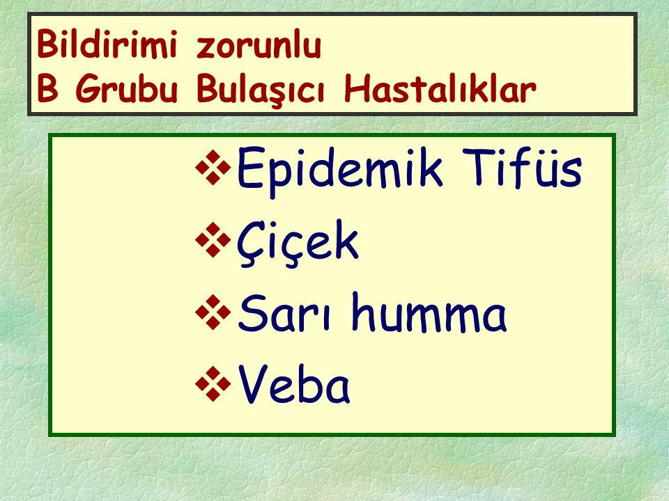 Bildirimi zorunlu B Grubu Bulaşıcı Hastalıklar  Epidemik Tifüs  Çiçek  Sarı humma  Veba