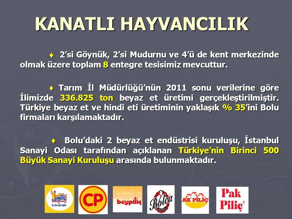 KANATLI HAYVANCILIK ♦ 2'si Göynük, 2'si Mudurnu ve 4'ü de kent merkezinde olmak üzere toplam 8 entegre tesisimiz mevcuttur.