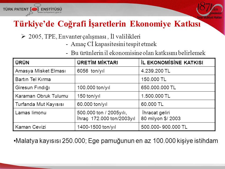 Türkiye'de Coğrafi İşaretlerin Ekonomiye Katkısı  2005, TPE, Envanter çalışması, İl valilikleri - Amaç Cİ kapasitesini tespit etmek - Bu ürünlerin il