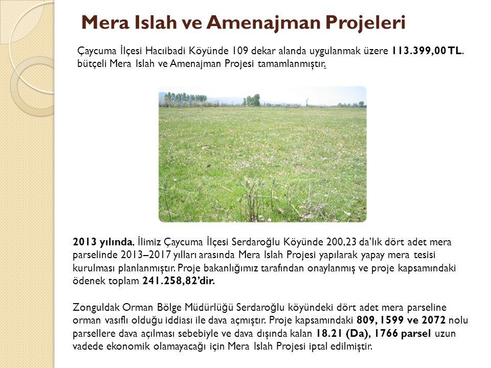 Mera Islah ve Amenajman Projeleri Çaycuma İ lçesi Hacıibadi Köyünde 109 dekar alanda uygulanmak üzere 113.399,00 TL.