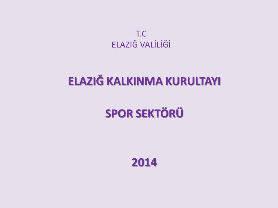 T.C ELAZIĞ VALİLİĞİ ELAZIĞ KALKINMA KURULTAYI SPOR SEKTÖRÜ 2014