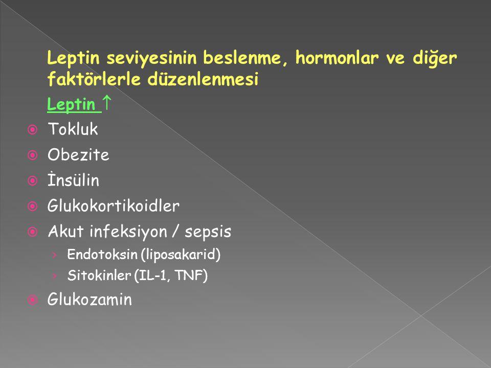 Leptin seviyesinin beslenme, hormonlar ve diğer faktörlerle düzenlenmesi Leptin   Tokluk  Obezite  İnsülin  Glukokortikoidler  Akut infeksiyon / sepsis › Endotoksin (liposakarid) › Sitokinler (IL-1, TNF)  Glukozamin