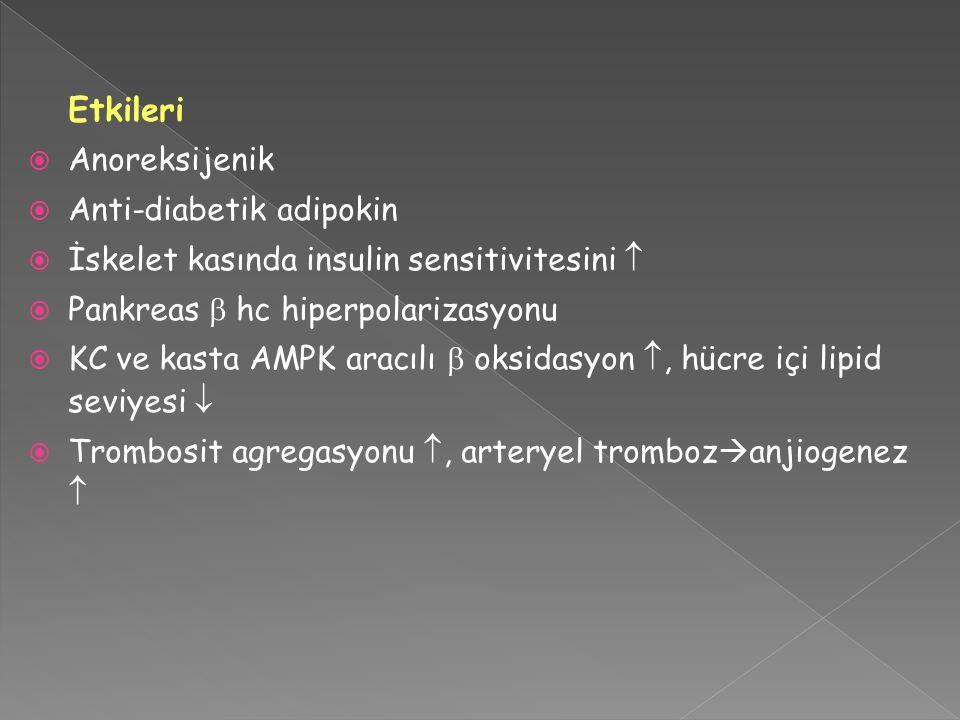 Etkileri  Anoreksijenik  Anti-diabetik adipokin  İskelet kasında insulin sensitivitesini   Pankreas  hc hiperpolarizasyonu  KC ve kasta AMPK ar