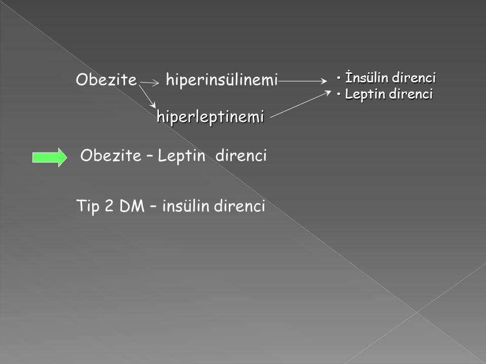 Obezite hiperinsülinemi Obezite – Leptin direnci Tip 2 DM – insülin direnci İnsülin direnci İnsülin direnci Leptin direnci Leptin direnci hiperleptine
