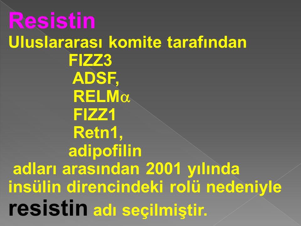 Resistin Uluslararası komite tarafından FIZZ3 ADSF, RELM  FIZZ1 Retn1, adipofilin adları arasından 2001 yılında insülin direncindeki rolü nedeniyle r