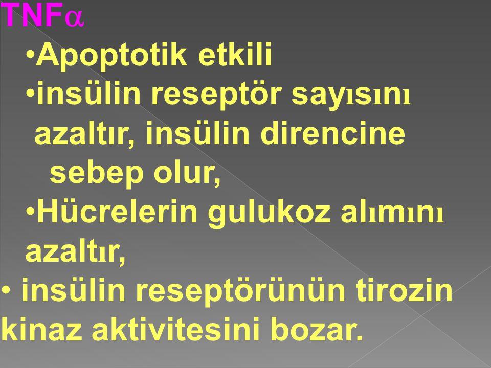 TNF  Apoptotik etkili insülin reseptör say ı s ı n ı azaltır, insülin direncine sebep olur, Hücrelerin gulukoz al ı m ı n ı azalt ı r, insülin resept