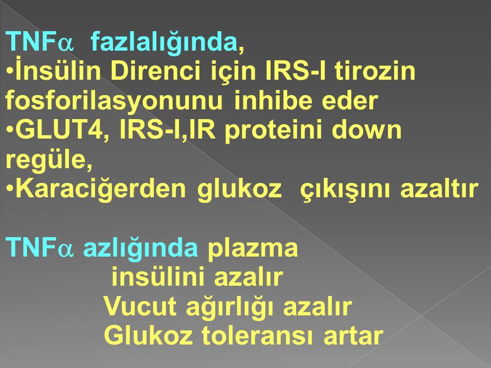 TNF  fazlalığında, İnsülin Direnci için IRS-I tirozin fosforilasyonunu inhibe eder GLUT4, IRS-I,IR proteini down regüle, Karaciğerden glukoz çıkışını azaltır TNF  azlığında plazma insülini azalır Vucut ağırlığı azalır Glukoz toleransı artar