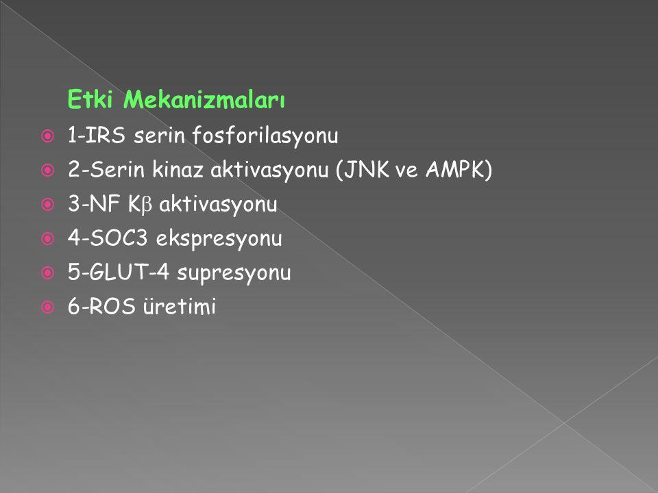 Etki Mekanizmaları  1-IRS serin fosforilasyonu  2-Serin kinaz aktivasyonu (JNK ve AMPK)  3-NF K  aktivasyonu  4-SOC3 ekspresyonu  5-GLUT-4 supresyonu  6-ROS üretimi